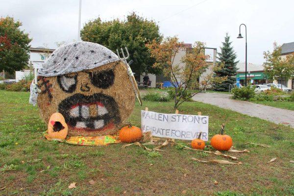 displays in town of Elmvale