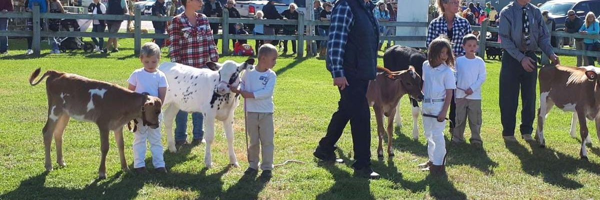 Competitions - Jr. Dairy Show at Elmvale Fall Fair