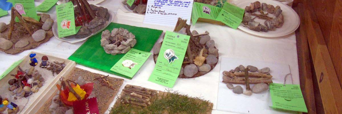 Jr. Fair Prize List competition at Elmvale Fall Fair